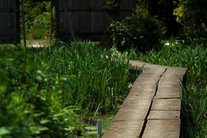 菖蒲園白井