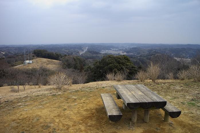 野見金公園