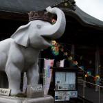 吉(幾)ゾウくんのいるお寺wwww 長福寿寺