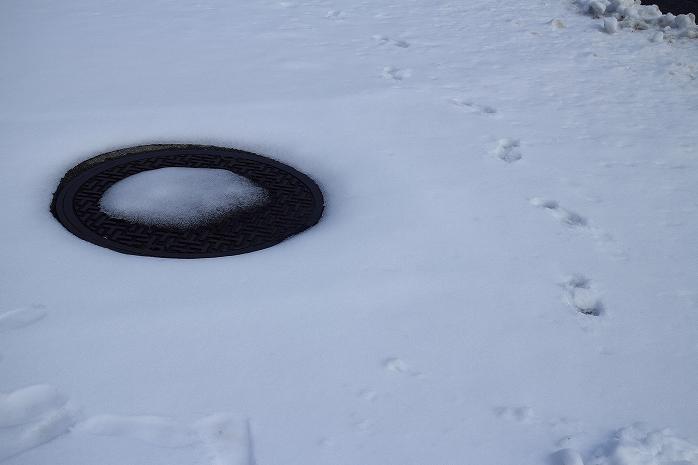 雪に慣れない地域で雪が降ると、それはもう大混乱でwwww