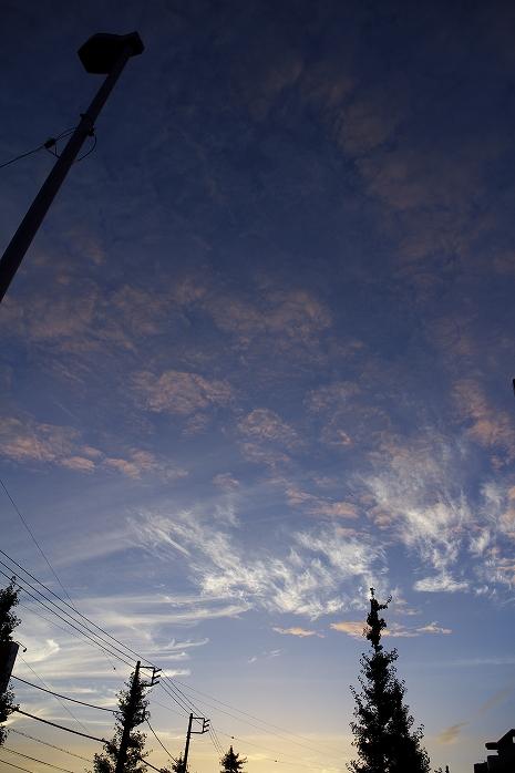 この時期の、夏でも秋でもない空がスゴくいい!!