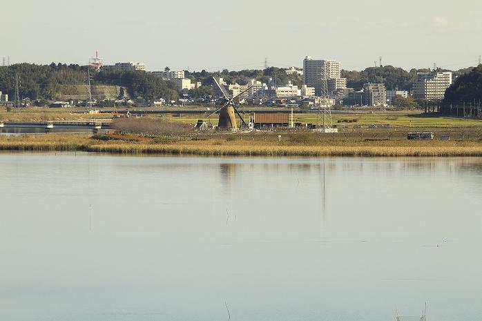 日本一汚い湖で有名な印旛沼を見てきたった。