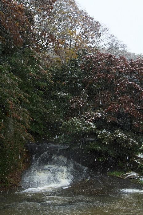 長南の雪とモミジと蔵持と