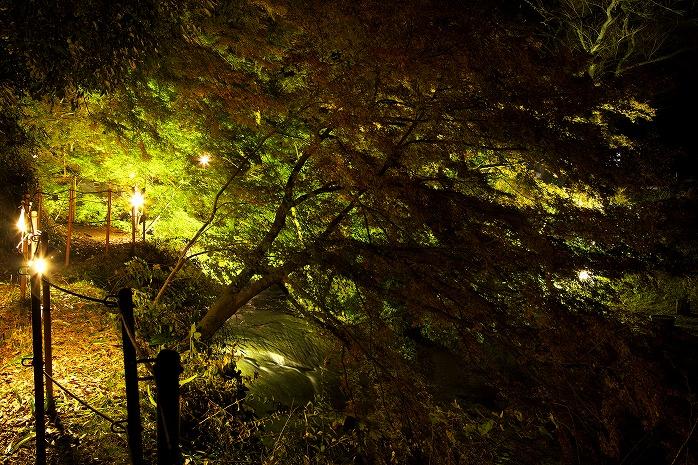 くらもち滝の里のライトアップ・・・が・・・