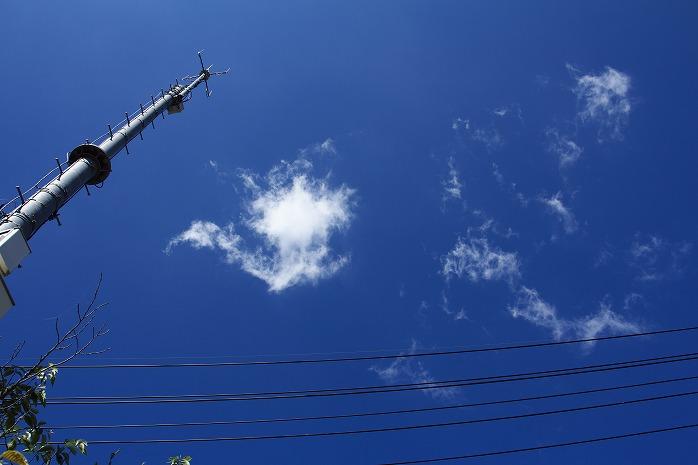 空が青いから白をえらんだのです。奈良少年刑務所での取り組み