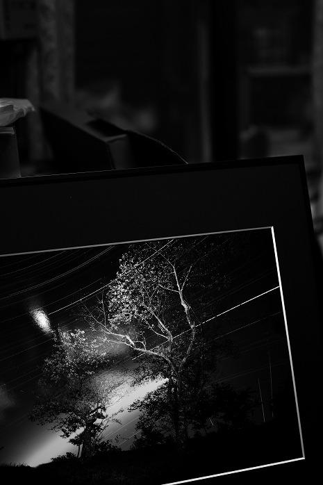 第10回 長生郡写真クラブ合同作品展のお知らせ
