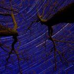 星空のインターバル撮影で軌跡がギザギザになっちゃう