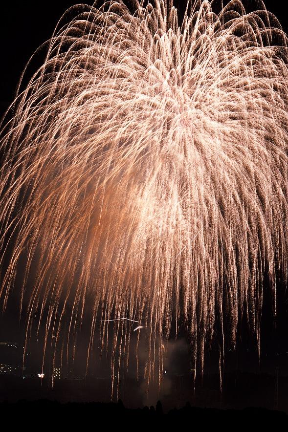 野見金公園から長南町の花火大会を見る人なんて誰もいないと思ったのにいぃ!!