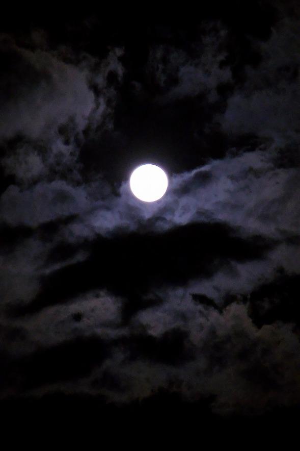 この世をば我が世とぞ思ふ望月の欠けたることもなしと思へば