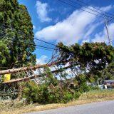 台風15号による停電復旧に当たられた方々に感謝申し上げます