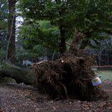 台風19号の被害に遭われた方へお見舞い申し上げます。