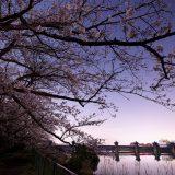 ファーストライト Canon EOS R6